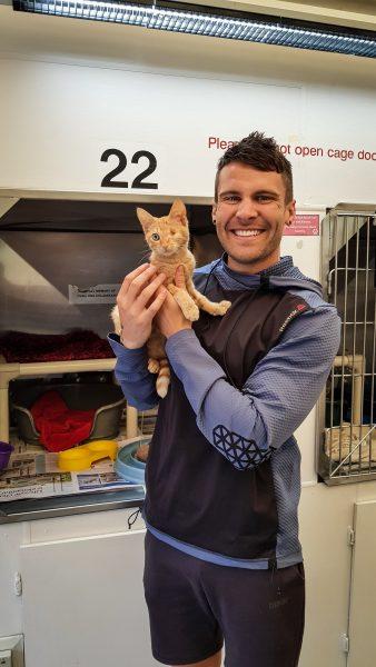 SPCA Auckland Animal Village